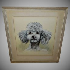 Vintage Watercolor of Poodle by Saint-Remy