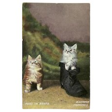 German 1908 Postcard of Puss in Boots by E Landor