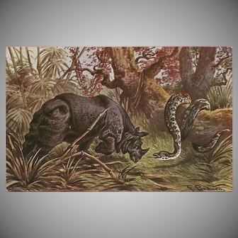 F. Perlberg Vintage Postcard of Rhino and Snake