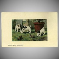 Vintage Undivided Sydney Hayes Souvenir Postcard of Puppies and Frogs