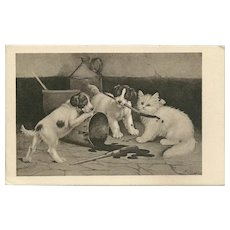 Artist Signed Vintage Postcard of Puppies and Kitten and Paint