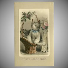 German Glossy Valentine Postcard with Cat in Basket