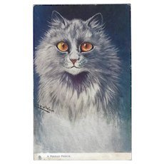 Raphael Tuck Oilette Louis Wain Postcard of Persian Cat