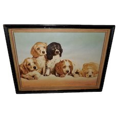 Anheuser-Busch Advertising Print 1940s Five Cocker Spaniel Puppies