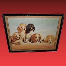 Anheuser-Busch Advertising Print 1940s Five Cocker Spaniel Puppies