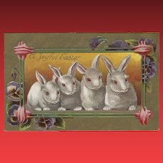 Embossed Easter Postcard with Four White Rabbits