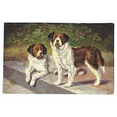Vintage Artist Signed German Postcard of Two St Bernard Dogs