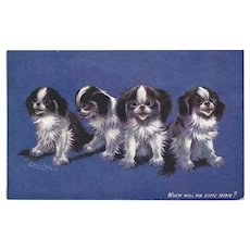 Louis Wain 1908 Raphael Tuck Oilette Postcard of Four Puppy Dogs