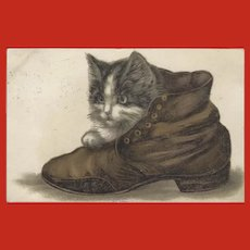Vintage Embossed 1909 Chromolithograph German Postcard of Cat in Shoe