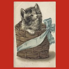 Vintage Embossed German Chromolithograph Postcard of Cat in Basket