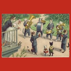 Max Kunzli Dressed Cat Postcard of Wedding Serenade