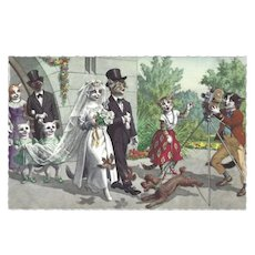 Mainzer Dressed Cat Postcard of Wedding Party