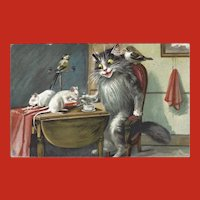 Maurice Boulanger Tuck Vintage Postcard of Cat with Mice and Birds