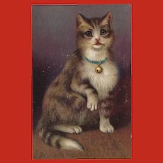 Vintage Postcard of Embossed Cat