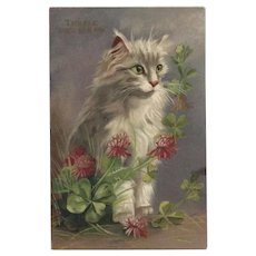 Maurice Boulanger Chromolithograph Postcard of Cat with Clover