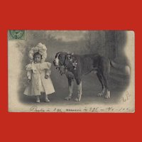 Undivided 1905 Photo Postcard of Girl with Large Dog