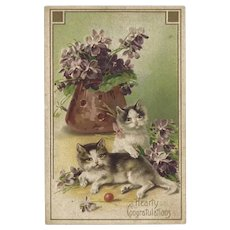 Vintage Embossed Postcard Cats and Flowers Congratulations