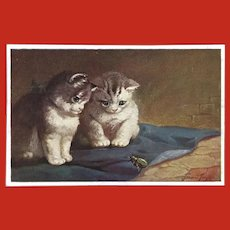 Francis Fernon Primus Postcard of Two Kittens Watching Bug