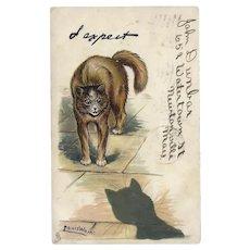 Louis Wain 1905 Raphael Tuck Postcard Cats