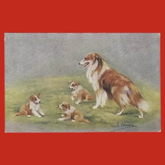 Persis Kirmse Vintage Postcard of Collie Family of Dogs
