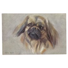 Pekingese Dog Postcard by Photochrom Celesque Series