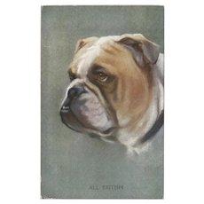 Bulldog Postcard by Photochrom Celesque Series