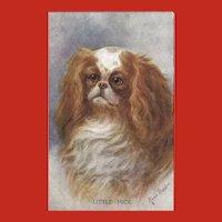 Rosa Bebb Vintage Postcard of Spaniel Dog
