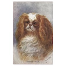 Rosa Bebb Vintage Postcard of Spaniel Dog
