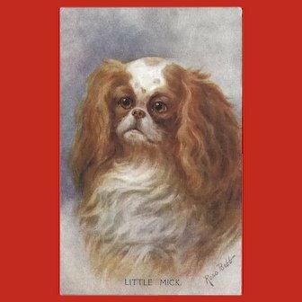 Rosa Webb Vintage Postcard of Spaniel Dog