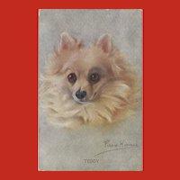 Persis Kirmse Vintage Postcard of Pomeranian Dog