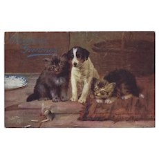 Raphael Tuck 1907 Christmas Greetings Postcard with Dog and Kittens