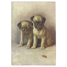 De Reszke Cigarette Advertising Embossed Postcard of Pug Puppy Dogs