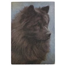 Embossed Advertising Postcard of Chow Chow Dog for De Reszke Cigarettes
