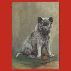 Embossed Advertising Postcard of Keeshond Dog for De Reszke Cigarettes
