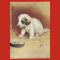 Embossed Advertising Postcard of Pyrenean Mountain Dog Puppy