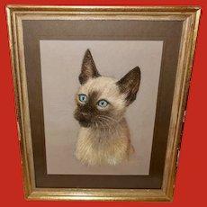 Ruth Bezanker Pastel Portrait of a Cat