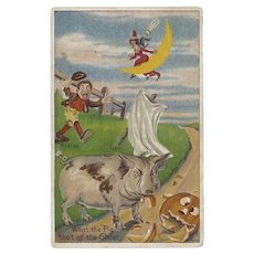 Embossed Halloween Postcard with Witch, Pig, Pumpkin