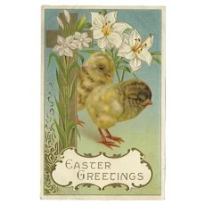 Embossed 1912  Easter Greetings Postcard with Two Chicks