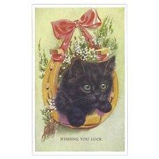 British Vintage Postcard of Kitten - Wishing You Luck