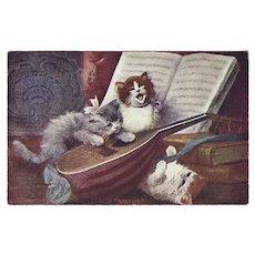 Undivided 1907 Postcard of Three Kittens and Mandolin