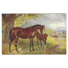 Raphael Tuck Norah Drummond Oilette Postcard of Horses