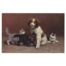Sperlich Vintage German Postcard of Dog with Cats