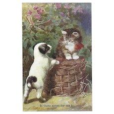 Salmon Series Vintage British Postcard of Puppy and Kitten