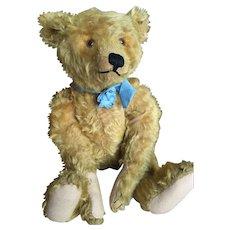 Very beautiful Antique Steiff Teddy Bear