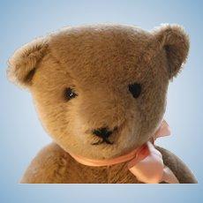 Mohair Teddy Bear,  Signed, 13 IN Jointed Body w Swivel Head, 13/80