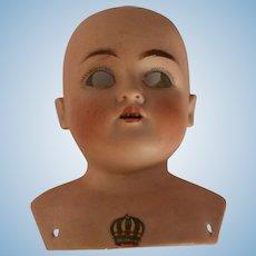Antique Kestner 154 German Bisque Doll Shoulderhead 8 1/2 IN Circ, Kestner Label