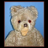Old German Mohair Teddy Bear - Hermann Zotty, w/ Open Mouth