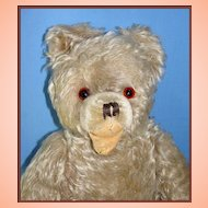Old German Mohair Teddy Bear w/ Open Mouth Label on foot - maker unknown