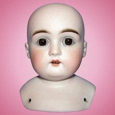 Antique Kestner Bisque Shoulder Head