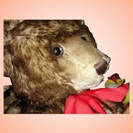 "Huge ""Happy Anniversary"" Steiff Teddy Bear / Teddybar.  1926 Limited Edition Replica"